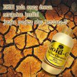 Obat Eksim Herbal Jelly Gamat Gold-G