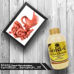 Obat Maag Ampuh Jelly Gamat Gold-G
