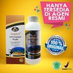 Baru Jelly Gamat Gold-G Walet 500 ml
