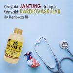 Jelly Gamat Gold G Untuk Penyakit Jantung