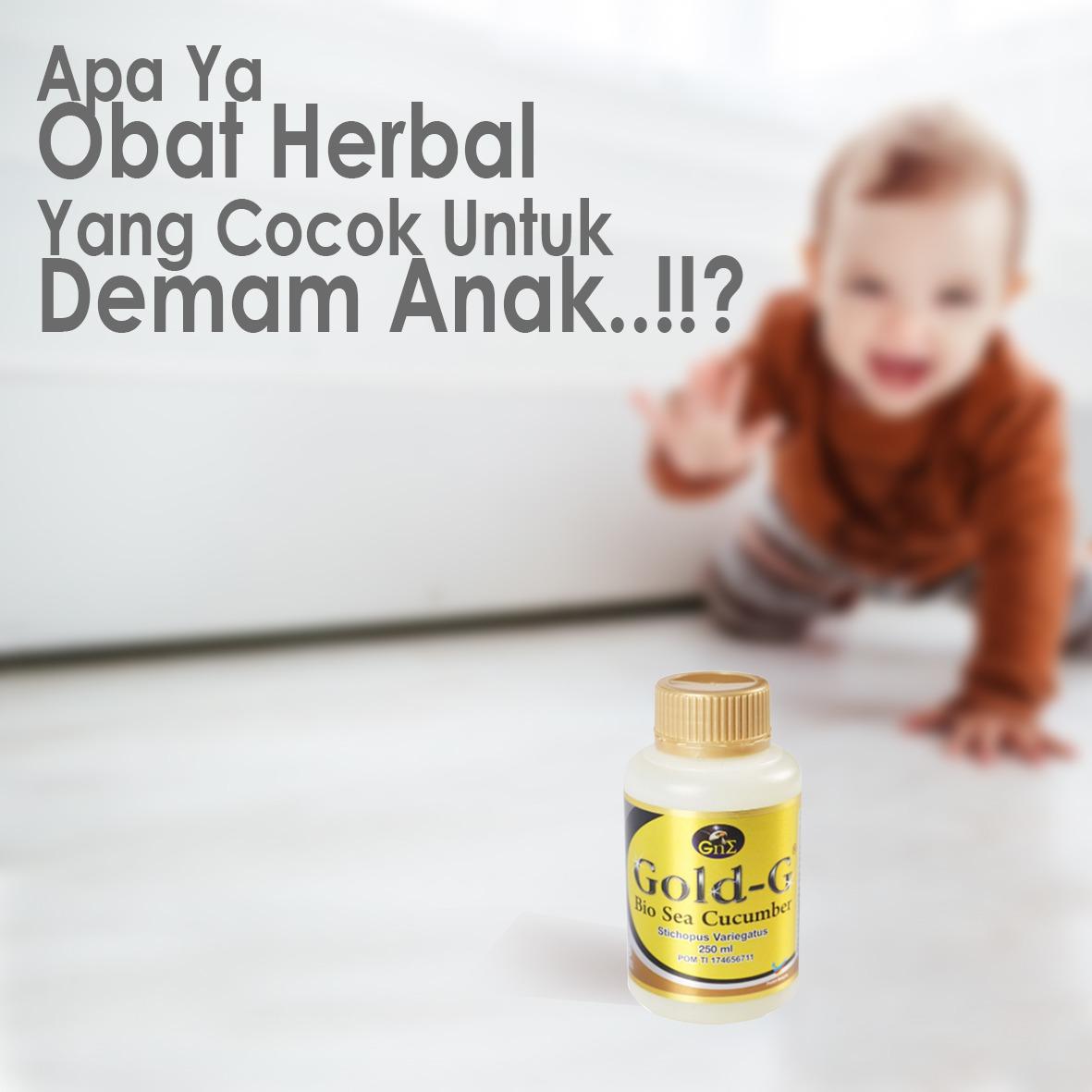 Obat Herbal Gamat Gold-G Mengatasi Panas Tinggi Anak