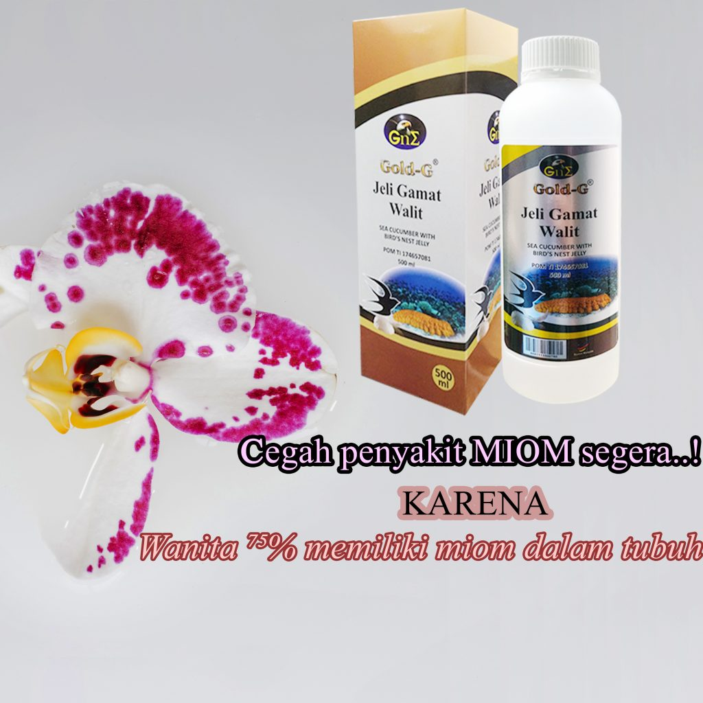 Obat Herbal Miom Gamat Walit Original