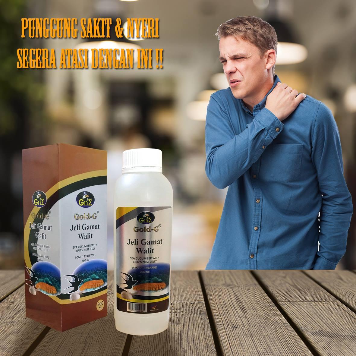 Obat Nyeri Punggung Jelly Gamat Gold G Walet