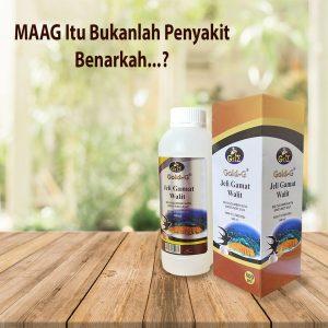 Konsumsi Jelly Gamat Walet Selamat Tinggal Sakit Maag