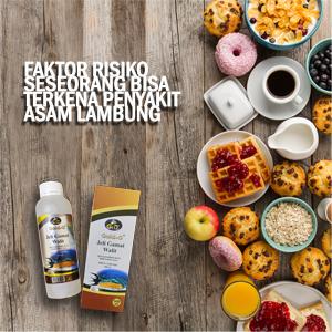 Obat Herbal Jelly Gamat Walet Untuk Asam Lambung