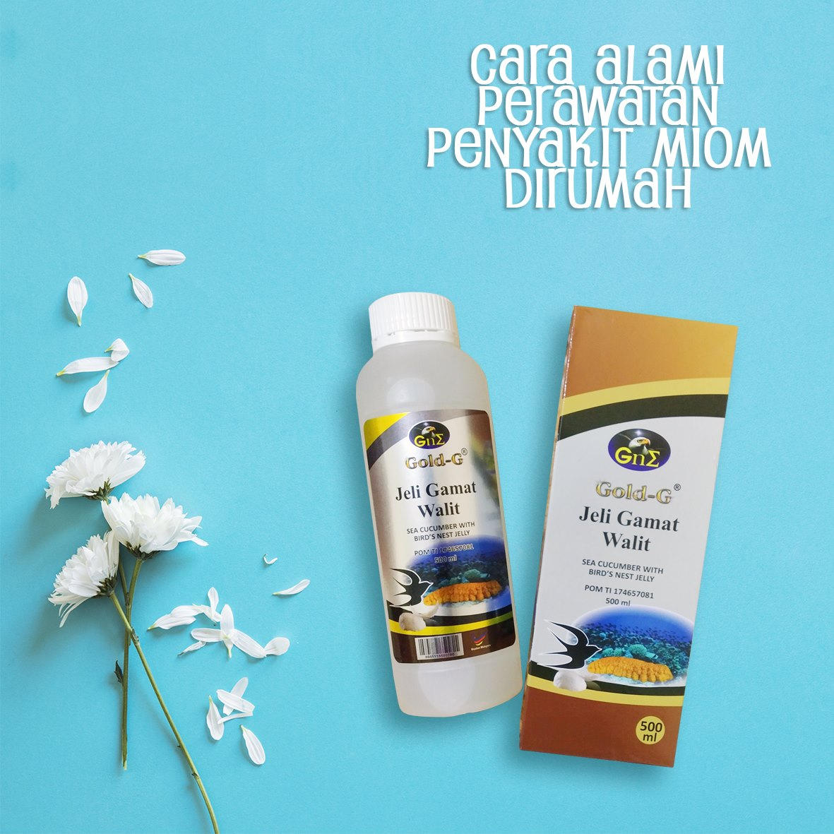Jelly Gamat Untuk Miom Gold G Walet