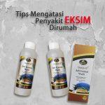 Obat Eksim Ampuh jelly Gamat Walet