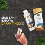 Obat Hipertensi Ampuh Jelly Gamat Walet