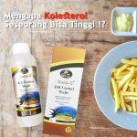 Obat Kolesterol Paling Ampuh Jelly Gamat Walet