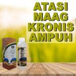 Obat Maag Kronis Paling Ampuh Jelly Gamat Walet