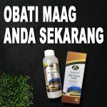 Obat Maag Paling Ampuh Jelly Gamat Walet