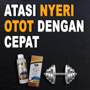 Obat Nyeri Otot Paling Ampuh Jelly Gamat Walet