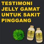 Testimoni Jelly Gamat Gold G Untuk Sakit Pinggang