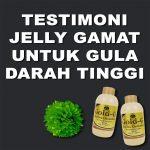 Testimoni Jelly Gamat Gold G Untuk Gula Darah Tinggi