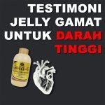 Testimoni Jelly Gamat Gold G Untuk Tekanan Darah Tinggi