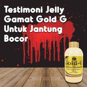Testimoni Jelly Gamat Gold G Untuk Jantung Bocor