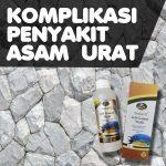 Komplikasi Asam Urat Jelly Gamat Gold G Walet