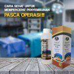 Obat Ampuh Pasca Operasi Jelly Gamat Walet