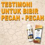 Testimoni Jelly Gamat Gold G Untuk Bibir Pecah-Pecah