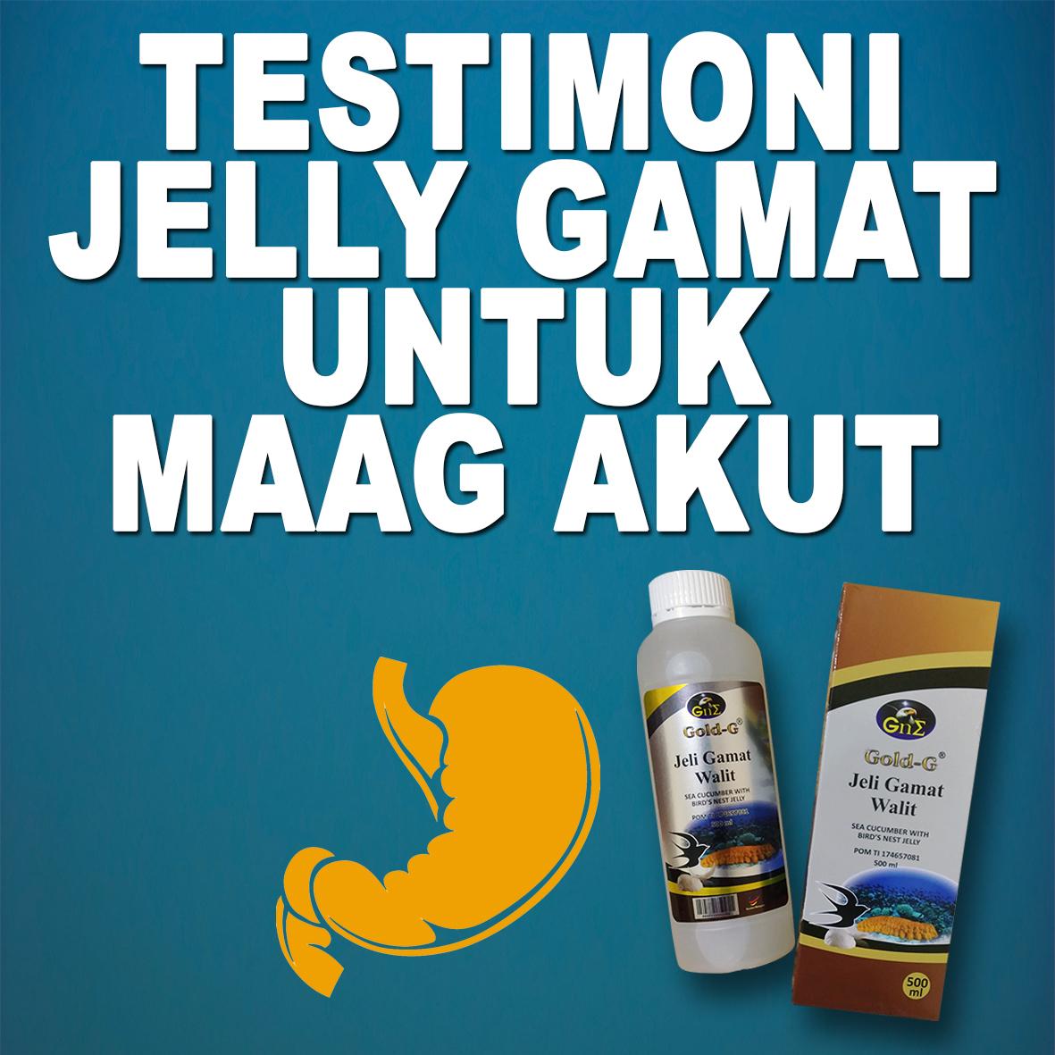 Testimoni Jelly Gamat Gold G Untuk Maag Akut