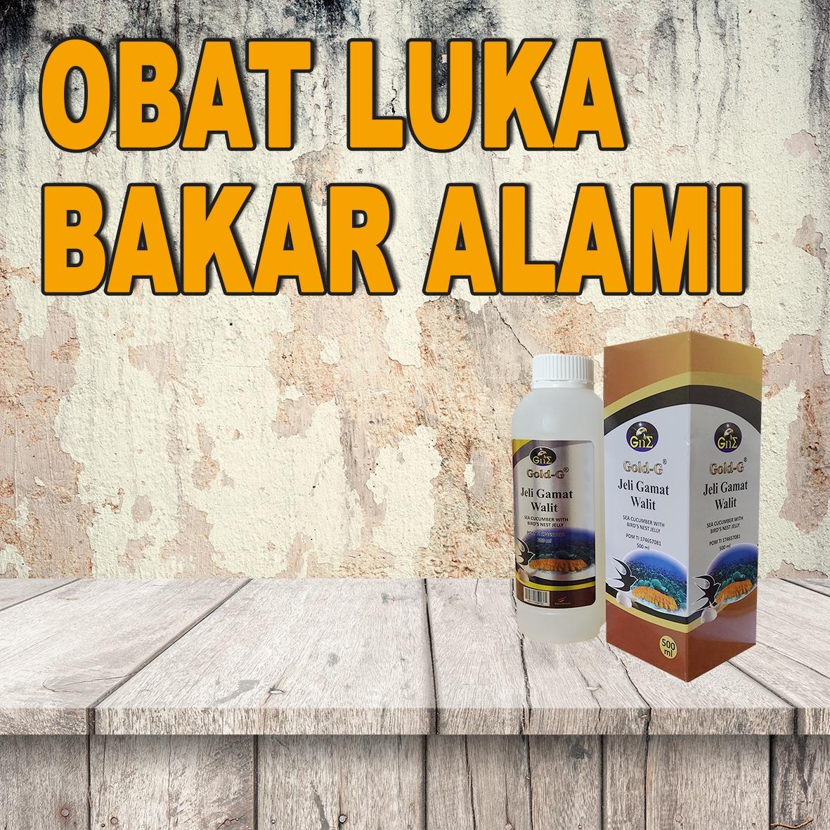 Obat Luka Bakar Ampuh Jelly Gamat Gold G Walet