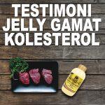 Testimoni Jelly Gamat Gold G Untuk Kolesterol Tinggi