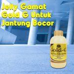 Jelly Gamat Gold G Untuk Jantung Bocor