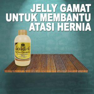 Jelly Gamat Gold G Untuk Hernia
