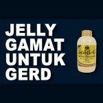 Jelly Gamat Gold G Untuk GERD