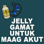 Jelly Gamat Gold G Untuk Maag Akut