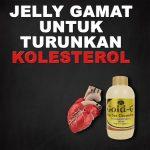 Jelly Gamat Gold G Untuk Kolesterol Tinggi