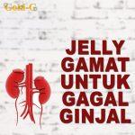 Jelly Gamat Gold G Untuk Gagal Ginjal