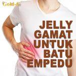 Jelly Gamat Gold G Untuk Batu Empedu