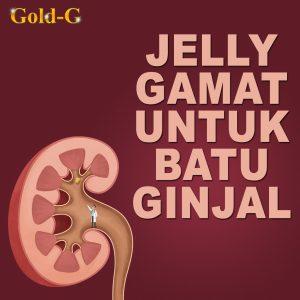 Jelly Gamat Gold G Untuk Batu Ginjal