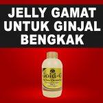 Jelly Gamat Gold G Untuk Ginjal Bengkak