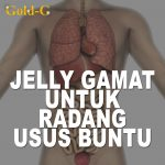 Obat Radang Usus Buntu Jelly Gamat