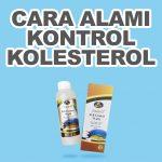 Cara Alami Sembuhkan Kolesterol