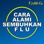 Cara Alami Sembuhkan Flu