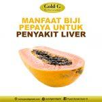 Manfaat Biji Pepaya Untuk Penyakit Liver