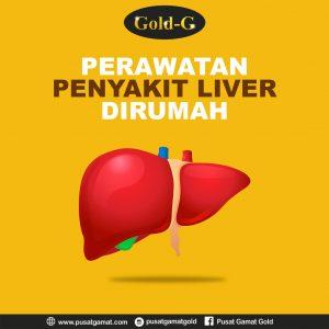 Perawatan Untuk Penyakit Liver Dirumah