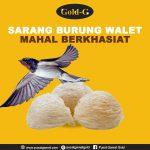 9 Manfaat Sarang Burung Walet