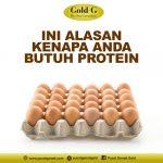 Ini Alasan Kenapa Anda Butuh Protein