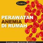 Perawatan Anemia Di Rumah