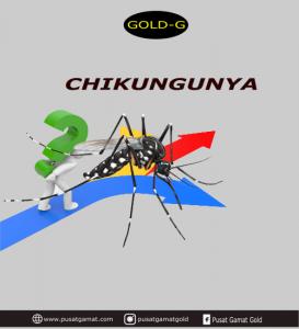 penyakit chikunguya