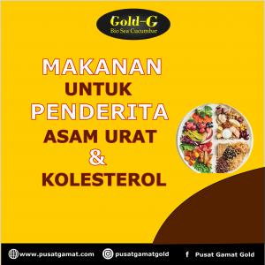 makanan untuk penderita asam urat dan kolesterol