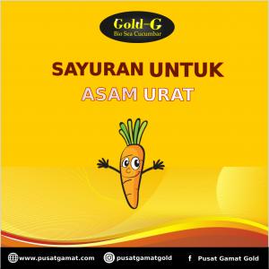 sayuran untuk asam urat