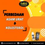 Perbedaan asam urat dan kolesterol